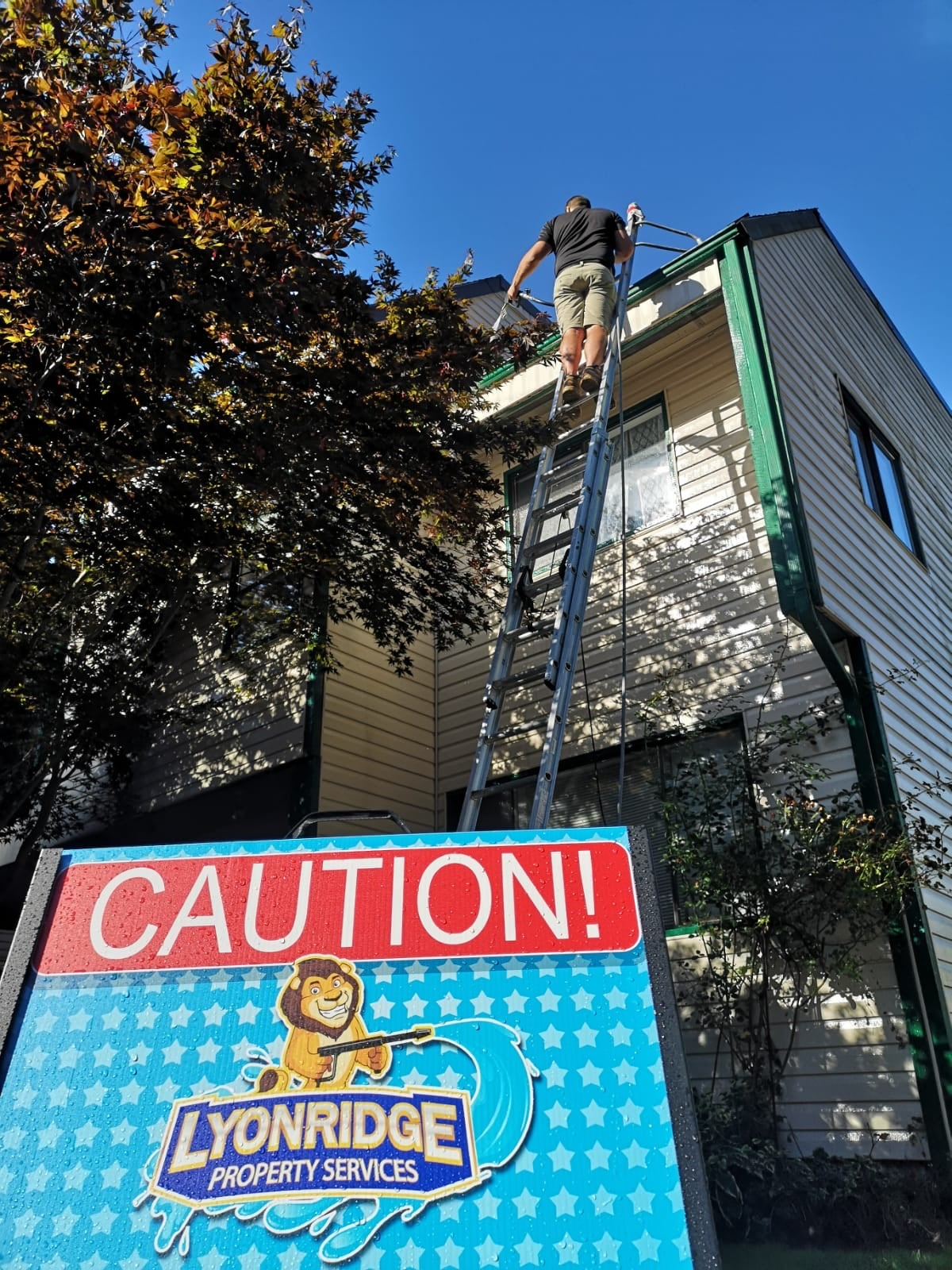Roof Washing Ladder