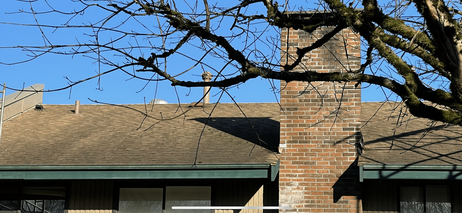 Roof Cleaning in Vancouver